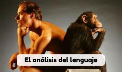 El estudio de las lenguas